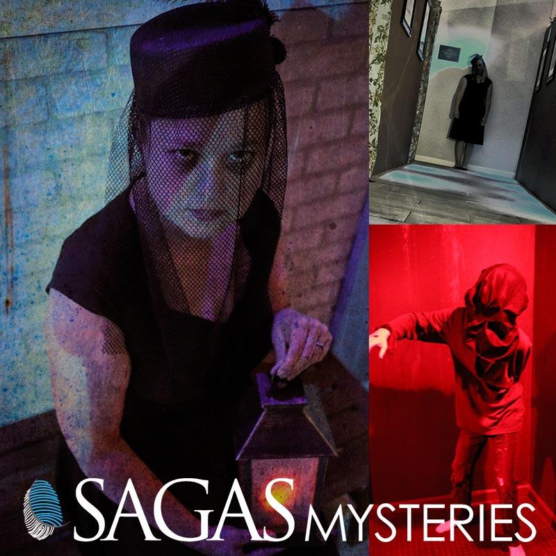Sagas Pic 800x800